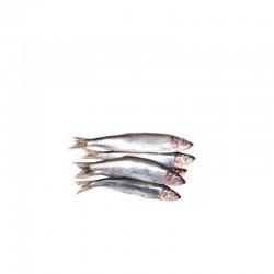 Harengs (détachables) 10 kg