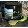 Algues & Plantes mélange BARF pour chiens