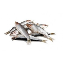 Sprats (détachables) 10 kg